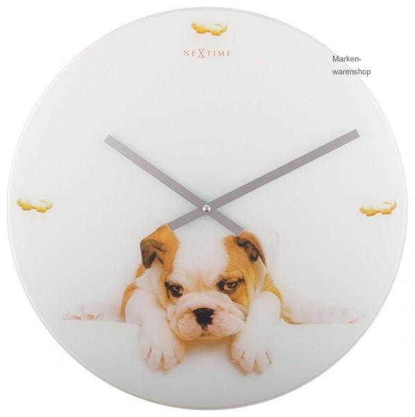 """Nextime - Wanduhr """"Puppy"""" Ø 43cm (8136) Glasuhr Quarzuhr Uhr Hund Dog"""